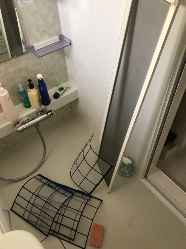 エアコンフィルターと網戸の丸洗い