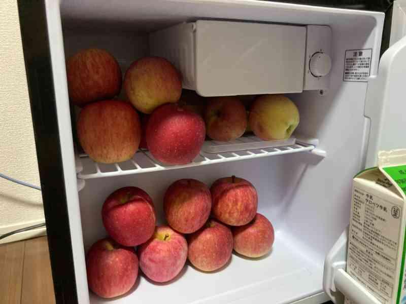 ミニ冷蔵庫に大量のリンゴを保管